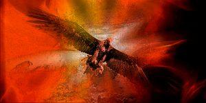 115. - Firebird