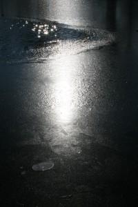 12. - Am Teich I