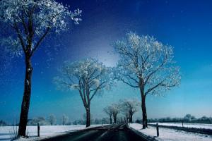 39. - COLD DAYS VII