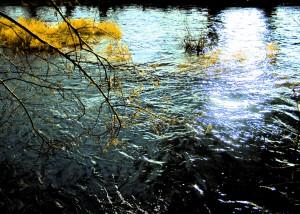 50. - Fluss