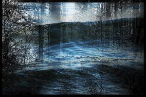Fairytale Forest 6.3bild.ausschn.bildg.rahmen.schw.signa.8x12