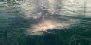 SKY WATER 2.2bild.signa.8x16.